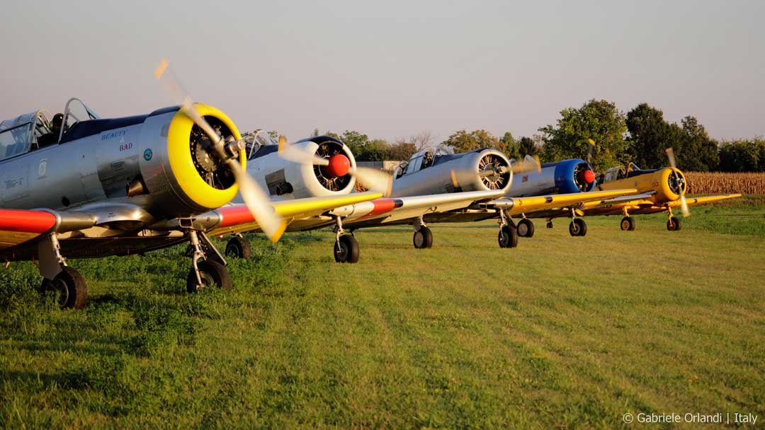 Harvard e Texan a Ceresara